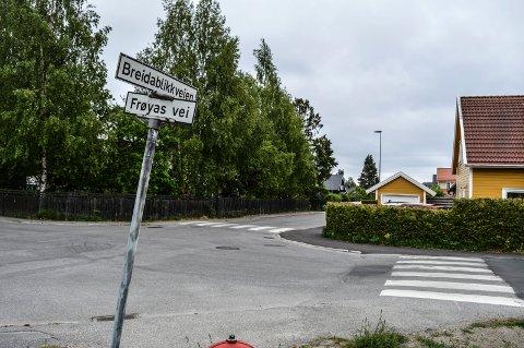 FORTETTING: Breidablikkveien (her et motiv i nord) er ett av  fem områder Rambøll foreslår for leilighetsbygg. Men rådmannen vil ha frie tøyler.