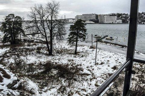 LANGESTRAND SYD: Utbyggingsfeltet til A/S Thor Dahl sett fra Framnesveien 35A.