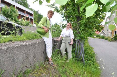 SVIKTER: Støttemuren langs Vesterøyveien - like ved Værven Brygge, siger mot boligene og har flere dype sprekker: Vi skjønner godt at naboene her er bekymret, sier SP-politikerne Kathrine Kleveland og Ida Cathrine Nilsen.