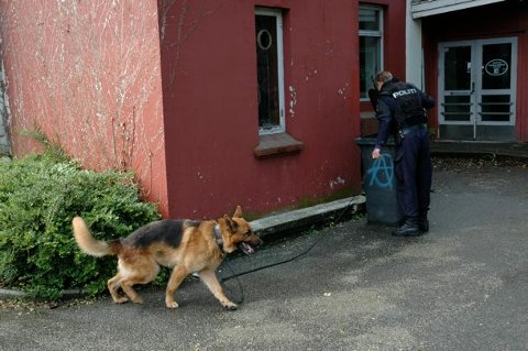 ØNSKER TIPS: Politiet vil komme i kontakt med vitner som kan ha sett raneren og medhjelperen før og etter ranet.