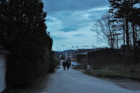 Skeiane ungdomsskole finner man litt lenger ned veien og på høyre side. I enden av veien er en skarp sving hvor det fort kan oppstå en ulykke, mener Falnes Wedøe.