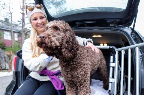 Hunden Boye sitter alltid i transportbur på tur. Dyrefaglig rådgiver Martine Fossem Nygaard i forsikringsselskapet If minner om at en løs hund vil veie hundrevis av kilo ved en kraftig oppbremsing eller trafikkulykke. (Foto: If/ANB)