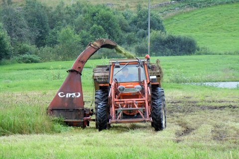 Staten tilbyr bøndene en ramme på 90 millioner kroner i jordbruksforhandlingene.