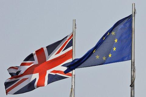 EU består i dag av 28 medlemsland, men nå er Storbritannia på vei ut som følge av at britene valgte slik i folkeavstemningen i juni i fjor.