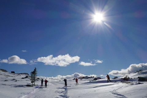 Åtte av ti nordmenn har ifølge en ny undersøkelse planer om å komme seg ut i naturen i påsken.
