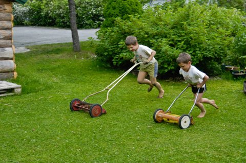Gressplenen er en selvsagt del av enhver hage. Men det krever både tid og krefter å vedlikeholde den perfekte plen.