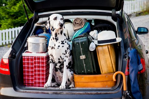 Vær bevisst på hvordan du pakker når du skal på langtur med bilen. Feil plassering av bagasje og gjenstander i bilen kan være livsfarlig.