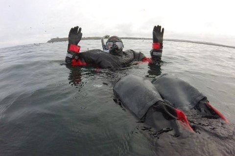 Nå kan du snorkle med lomvier i Varanger.