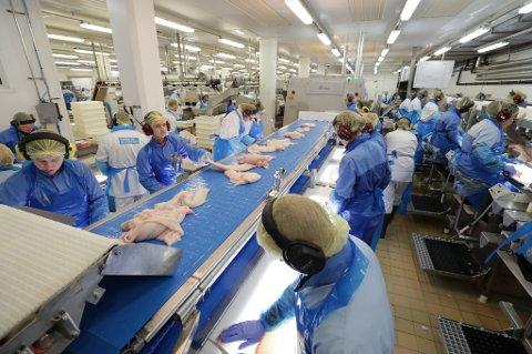 Stadig flere norske arbeidstakere forlater norsk fiskeindustri.