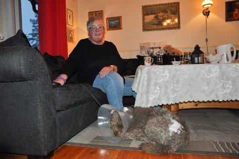 Hunden Rigoletto (6) og matmor Marie Heléne Røyset ble brutalt angrepet av en løshund hjemme ved sin egen garasje i boligfeltet i Havnås.