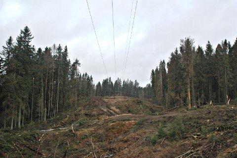 ILLUSTRASJONSBILDE: Bildet er tatt fra linjerydding på høyspentledninger på Slitu, for noen år tilbake. ARKIVFOTO