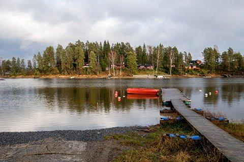 VIKSØYA: Dette er Viksøya i Stora Lee - ei øy som er tett bebygd med hytter. Den aktuelle hytta ligger nord på øya.