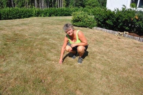 GULT GRESS: Ragnhild Solås Rustad forsikrer om at gresset vil klare seg selv om det er brunsvidd og inntørket om dagen.
