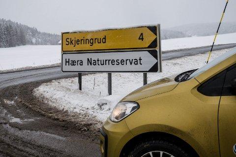 HINDRER SIKT: Dette er skiltet som står plassert i krysset mellom Hølandsveien og Dillevikveien. Skiltet hindrer all sikt nordover for trafikater som skal ut på fylkesvieen fra Dillevikveien.