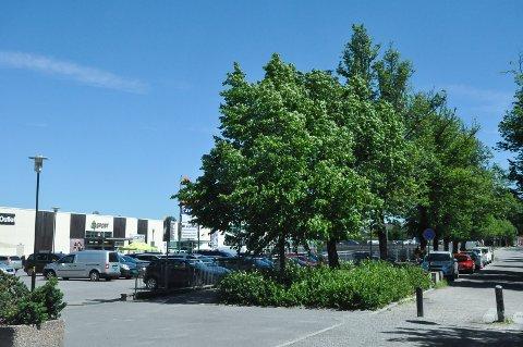 Mandag var det strålende sol og nærmere 20 varmegrader i Askim.
