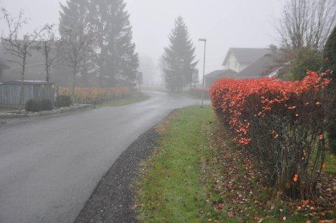 HEKKER: Det er flere hekker langs Peter Slotviks vei på Slitu.