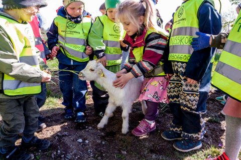 KOMMUNAL BARNEHAGE: Skiptvet kommune velger bort Foreldreundersøkelsen i sitt arbeid. På bildet er barn fra den Finlandsskogen barnehage.