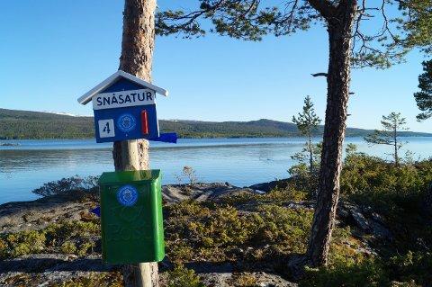 MÅLET: Gleden var stor da vi fikk øye på Snåsatur-kassen.