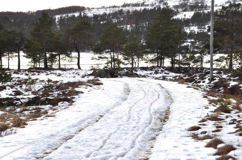 Det var rett nok nokre flekkar med snø på Bjødnabu på måndag, men det var ikkje mykje som minna om skiføre.
