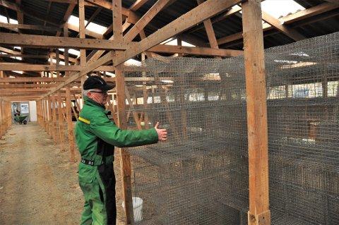 SNART TOMT: Atle Hauge riv for tida dei siste bura i minkhuset som tidlegare romma 5.000 dyr. Neste veke får han truleg vita meir om kva erstatning han kan venta seg.