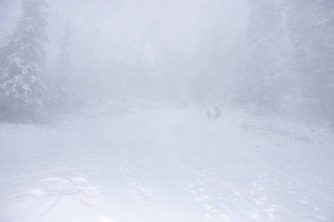 TRASSA: Få trassa vêret og let seg lokke ut i fjellheimen i går. Edvin (4) og Elias (9) Larsen Enger let seg ikkje stoppe. FOTO: INGEBJØRG BØ
