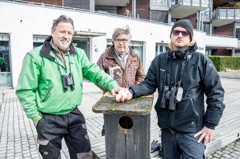 Sjokkerte: Tor Melseth (t.v.), Svein Rynning og Anders Faugstad Mæland ble sjokkerte da de fant uglekassa med fire døde kattugleegg inni. (Foto: Inger Lene O. Steen)