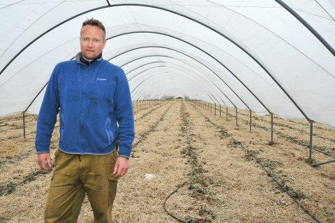 KRISESOMMER: – Avlingsmessig var det en helt forferdelig sommer. Vi vannet jordene daglig, men det hjalp ikke, sier Petter Borgestad.