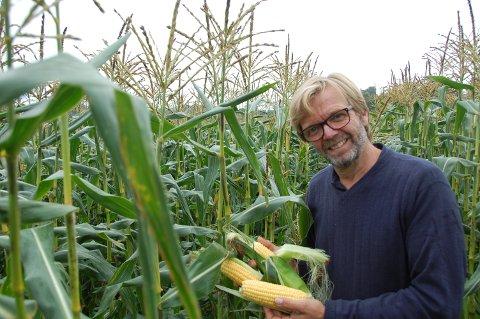 SLITSOMT I ÅR: - Årets maissesong har vært utfordrende, men jeg er klar for neste år, lover maisbonden Erik Aas.
