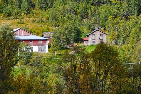 GARD OG GRUNN: På tunet står det låve, to hus, ei badstu, et nysnekret stabbur og like i nærheten ligger det ei utleiehytte.
