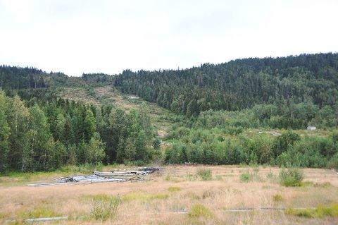 HER: I dette området, ved det gamle alpinanlegget, er det planer om å anlegge et nytt skytesenter.