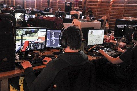 KONSENTRERT: Det var full konsentrasjon hos deltakerne da Telen var innom på lørdag.