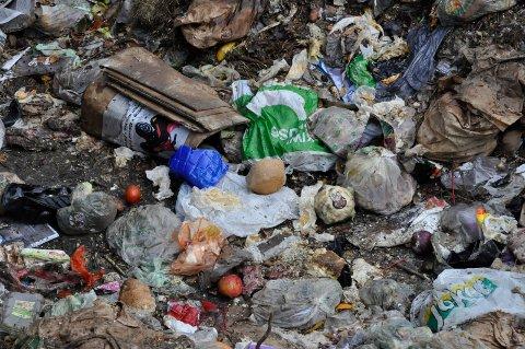 GRISETE MILJØVANER. De færreste kan med hånden på hjertet si at de aldri leverer inn tilgriset plastemballasje.(illustasjonsfoto)