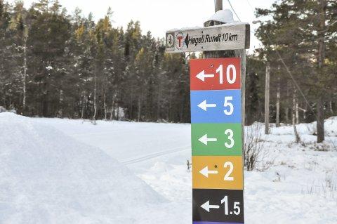 «LØYPE, LØYPE»: Nå er det bare å finne fram skia og ta turen opp til Grønkjær. Flere av løypene er nå klare for sesongen.
