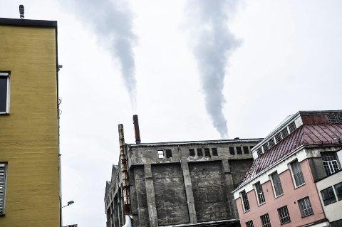 MILJØGEVINST: Hvis Thermokraft AS tar i bruk tre fra paller og tilsvarende materialer fra Irmat kan dette spare miljøet for minst 400 000 kg CO₂ per år, samt at det vil bli en vinn-vinn-situasjon for begge bedriftene, også økonomisk. (Foto: Kai Andersen)