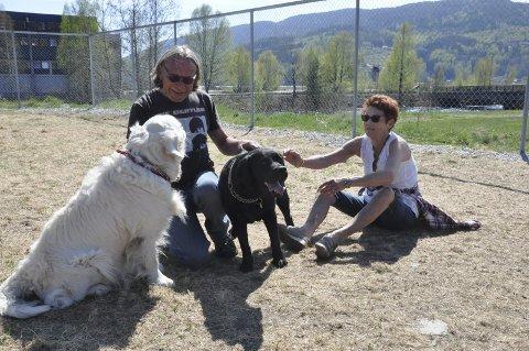 Trivsel: – Både to- og firbeinte trives her i hundeparken, sier Tom Jernquist og Åse Velta, med golden retrieveren Bamse og labrador retriever Nala, begge fem og et halvt år.