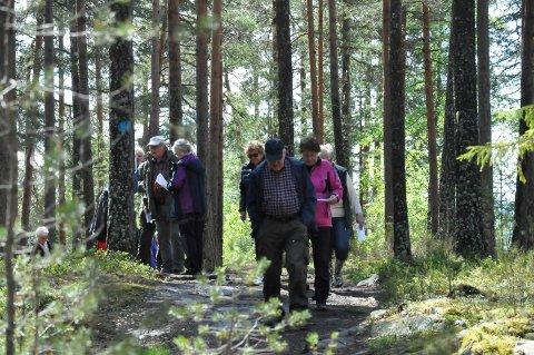Rekreasjon: Mange bruker området rundt Tnnemyra til rekreasjon, og mener bymarka ødelegges dersom skogen hogges.