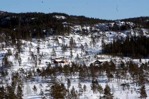 HYTTER: Ikke alle er klar over det. Men Notodden har faktisk 1278 hytter innenfor sine grenser. Og mange flere ledige hyttetomter. Dette bildet viser en del av Nystulvann hyttefelt opp mot Lifjell på et tidligere tidspunkt.
