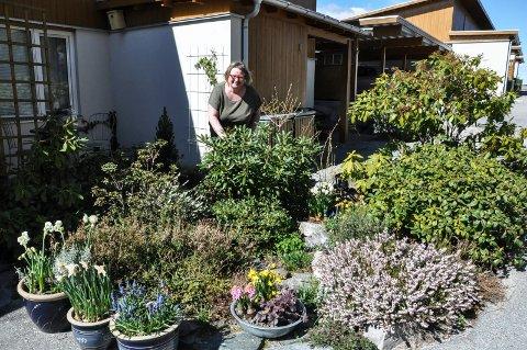 Tid for hage: Anne Hefre har grunn til å være kry av dette bedet. Nå står blant annet Rhododendron med knupp. Planene i bedet krever lite stell.