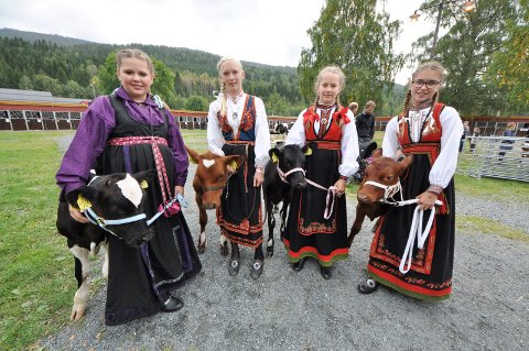 Dyrsku'n 2014  Malin Roligheten, Tone Mælandsmo, Kristine Tveiten og Ida Støa - kalveutstilling