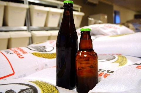 Husflid: Du trenger bare malt, humle, vann og gjær for å brygge øl.