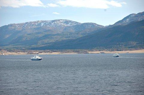 - En pilot over Halsafjorden vil spare tid og penger, og sannsynligvis styrke mulighetene for norske leverandører på samtlige kryssinger, skriver innleggsforfatteren.