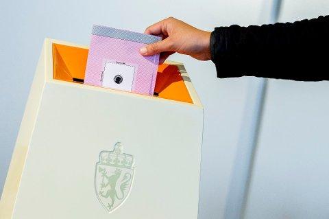 Forskere anbefaler stemmerett for ungdom.