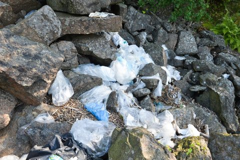 PROBLEM: Søppelet som flyter i sjøen kjenner ingen landegrenser og driver i land hvor som helst. Nå vil eldrerådet i Tønsberg at kommunen forbyr bruk av platsposer innenfor kommunegrensen.