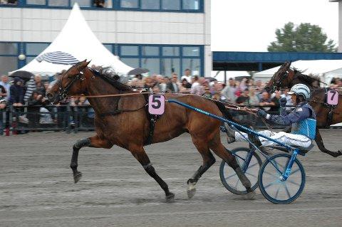 HØYT OPPE: NY Diamond in the Sky er sikker Gran prix-vinner for trener og kusk Frode Hamre.