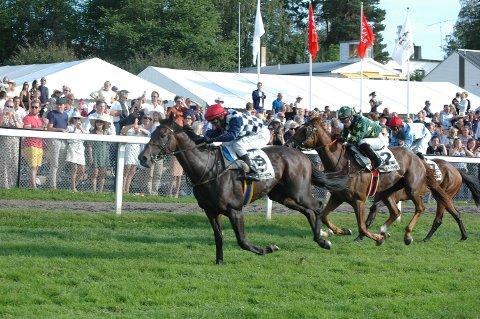 VESTFOLDHESTER: Macjack og Perfect Illusion gjorde toppløp i Norsk Derby mot sterke utenlandsfødte hester.
