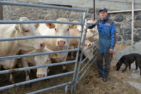 ROSES: Ammekubonde Olav Rognerud fra Lena hylles av bransjen som en av de beste storfekjøttprodusentene i Norge.
