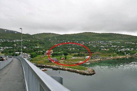 PÅ IS: Norgesgruppen ville lage butikk like nord for Sandnessundbrua på Kvaløya. Nå er planene forkastet. Arkivfoto: Astrid Helland