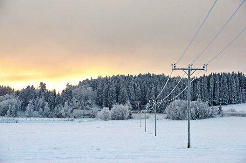 HØY PRIS: Kulde, lite snø og lite vind fører til høy strømpris torsdag, forteller Kristine Wormdal i NTE.