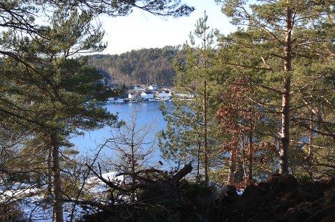 FRA LAND: Utsikten vil ikke akkurat bli dårlig fra de nye tomtene som nå oppføres på Sia på Borøya. Ikke hvis du liker Oksefjorden og Tverdalsøya, i hvert fall.