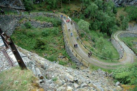 Turveg: Fleire parti av den gamle Kongevegen over Filefjell er mykje brukt som turveg. Her frå Vindhellavegen ved Borgund.